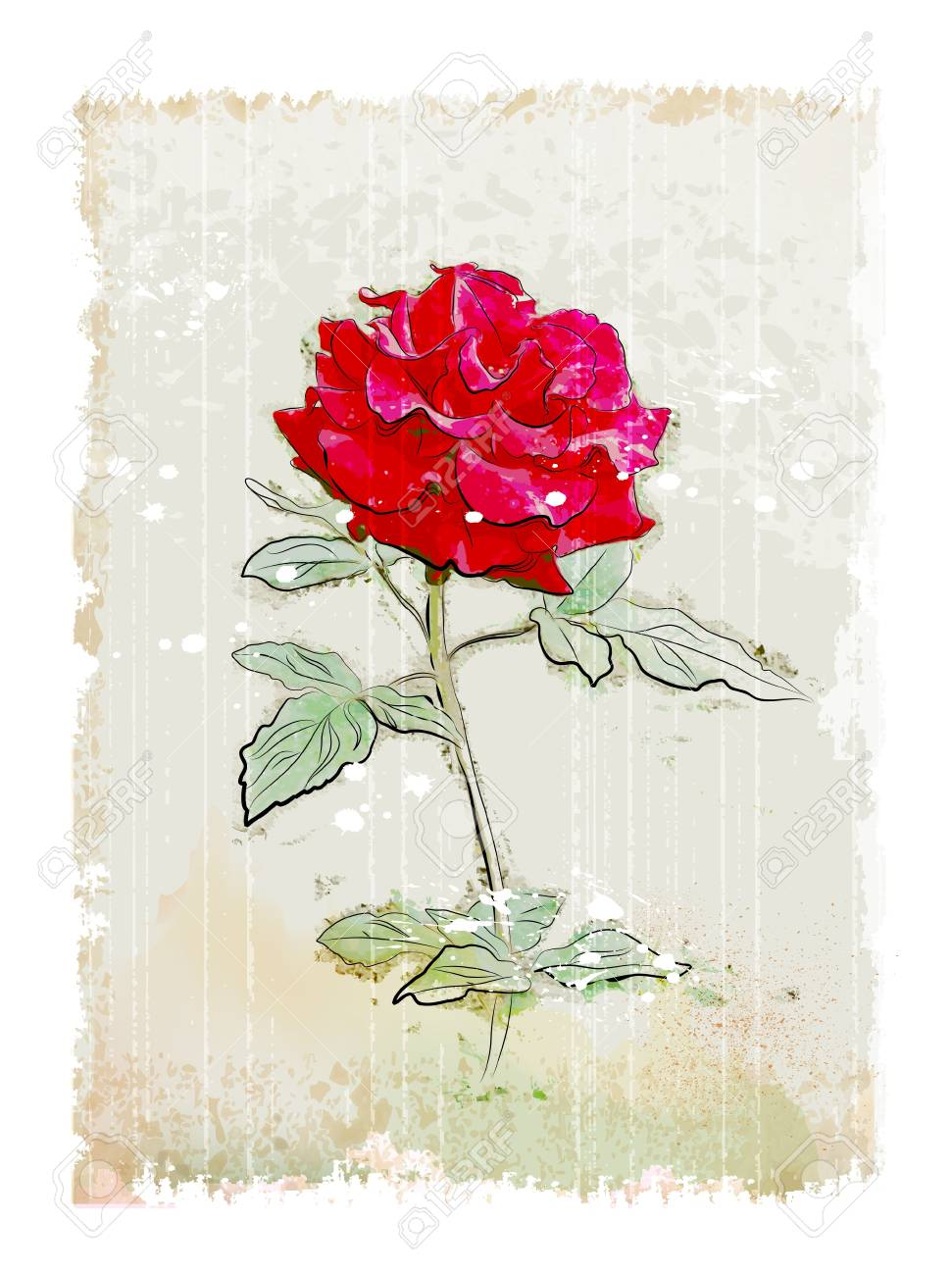 vintage red rose Stock Vector - 9684011