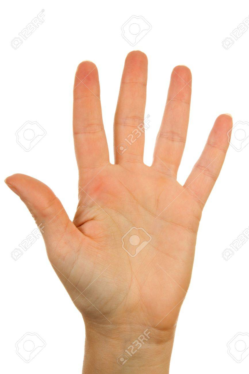 Woman's hand counting number 5 over white background Stock Photo - 6085790