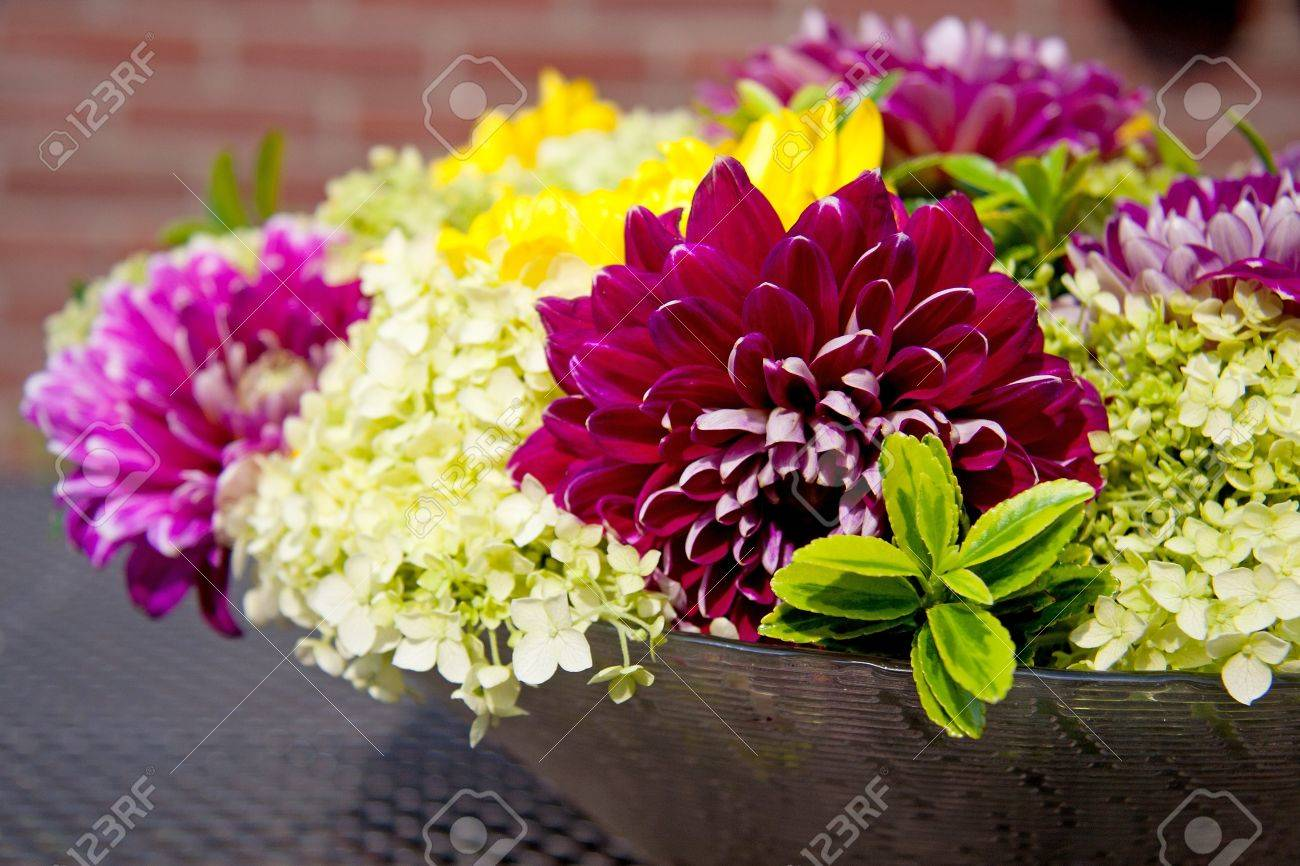 Dahlia flower arrangement on table outside in sunshine stock photo dahlia flower arrangement on table outside in sunshine stock photo 7336703 izmirmasajfo