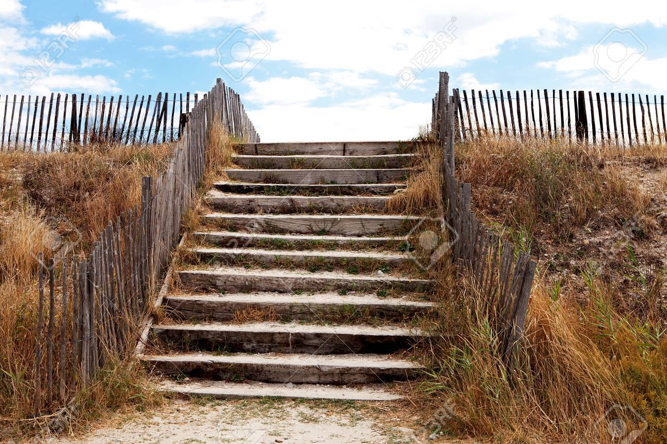 Beach Access Over Protective Dunes With Stairs Stock Photo   23224566