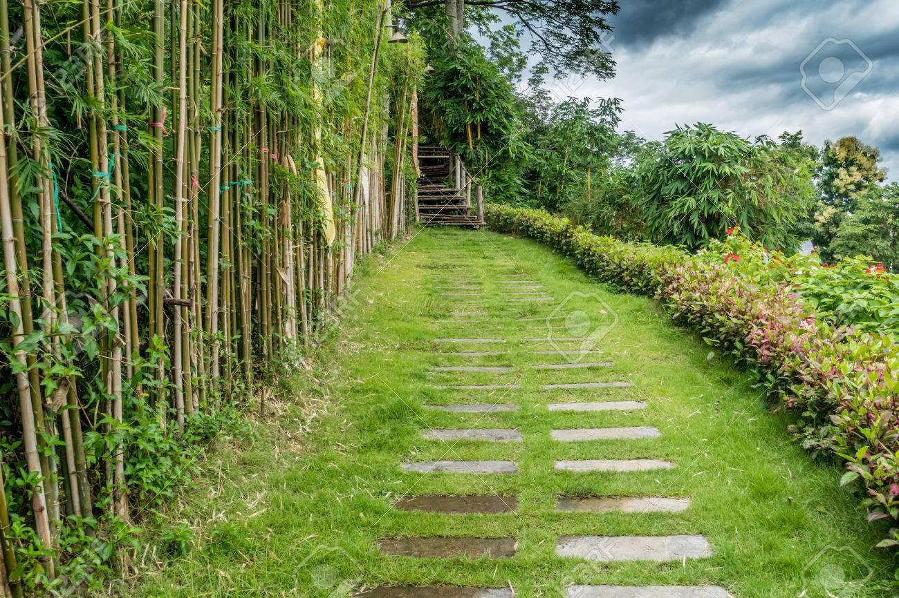 Cheminée en béton sur la colline avec haie de bambou