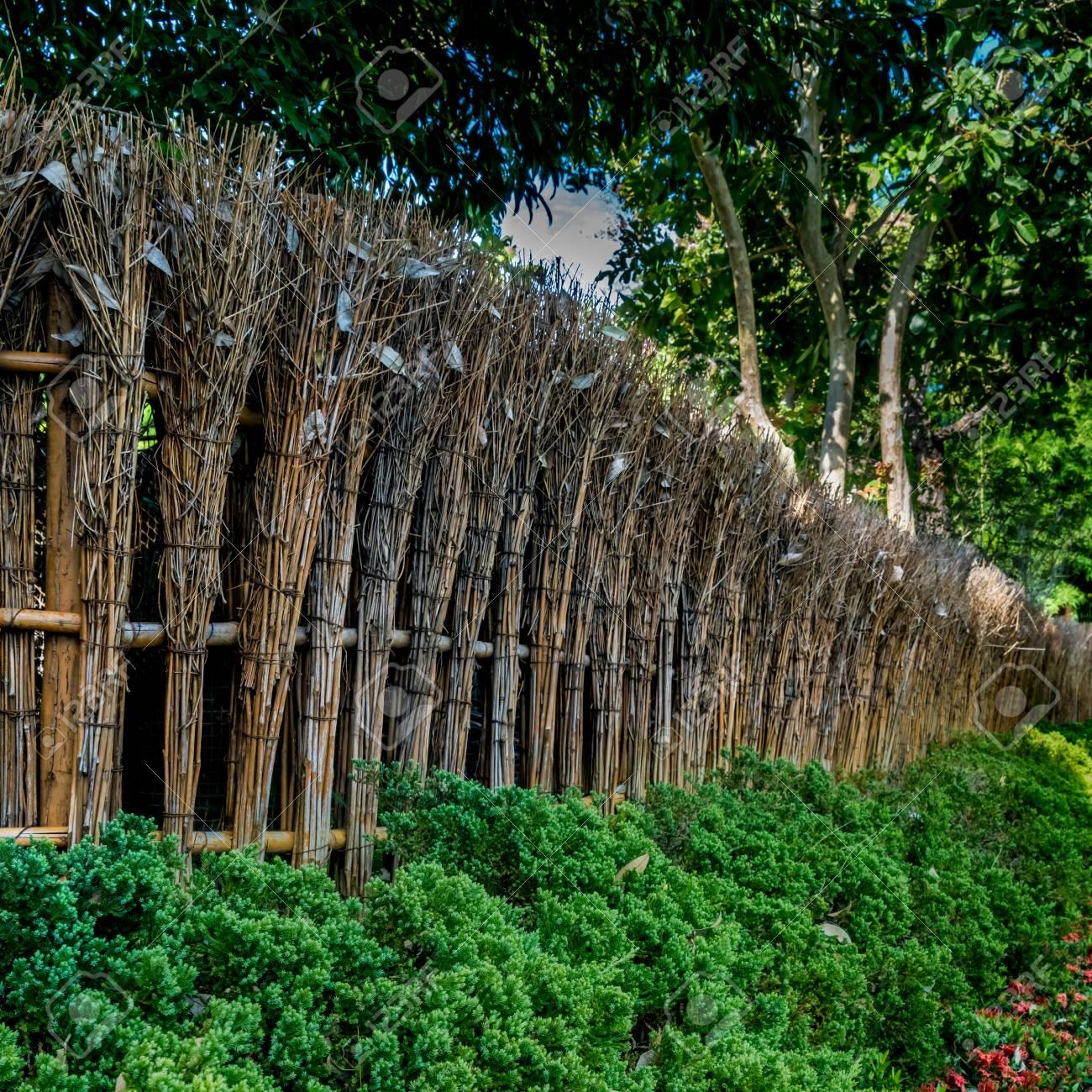 Clôture En Bambou Du Jardin Japonais Avec Des Plantes Vertes Dans Le ...