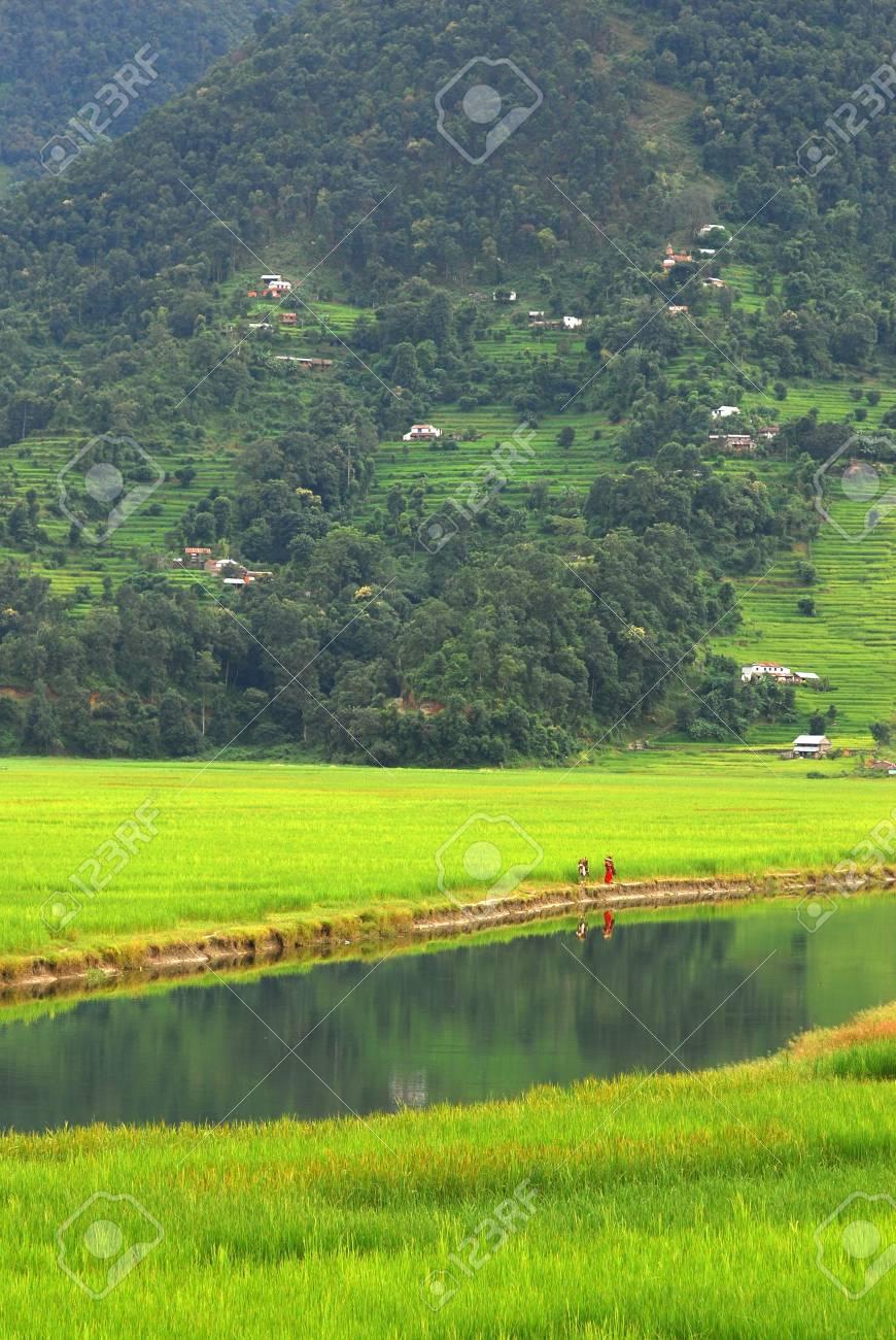 Farmers in the water reflection,fewa lake,nepal Stock Photo - 5758006