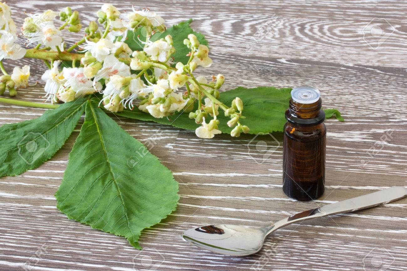 Bach Flower Remedies With Blossoms Of White Chestnut On Wooden
