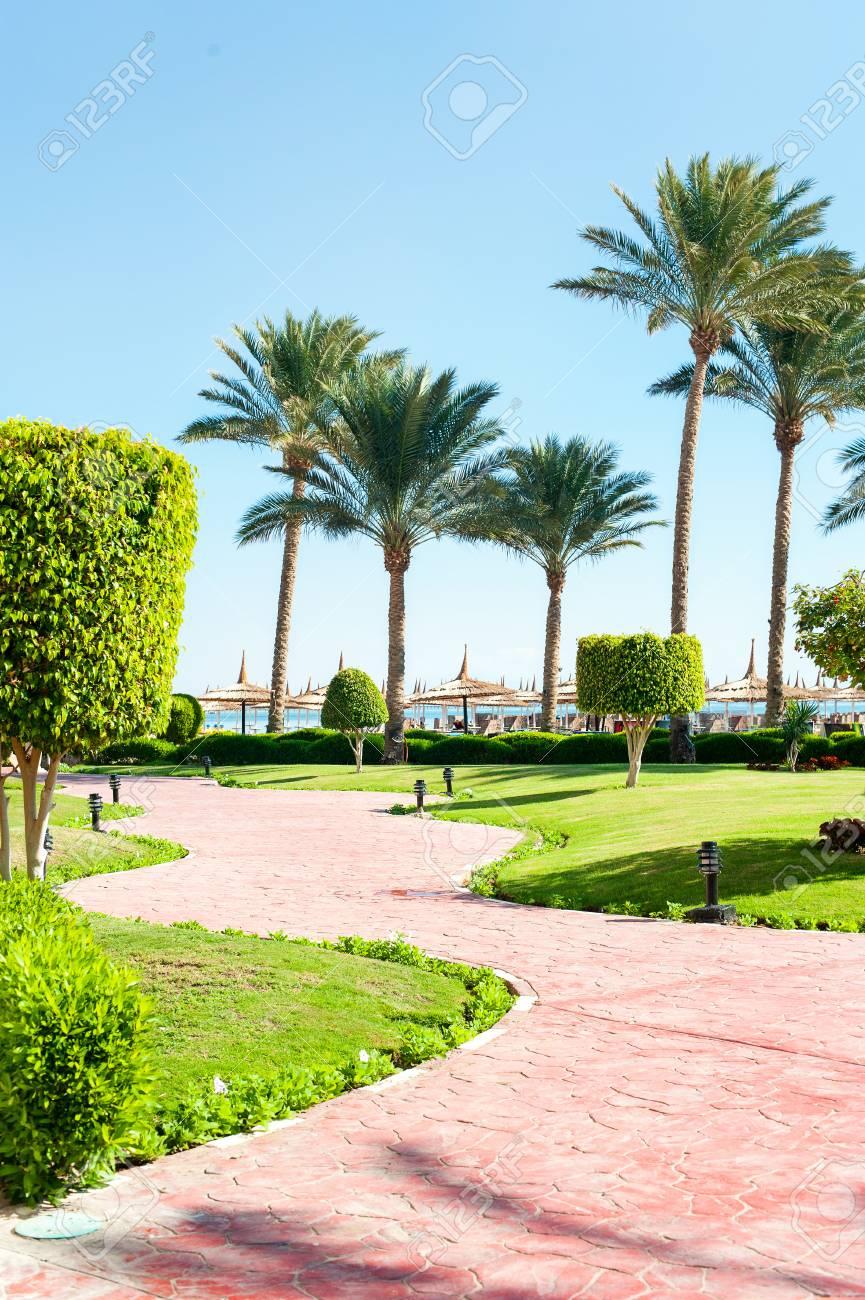 Topiary Tree In Egyptian Formal Garden Sharm El Sheikh