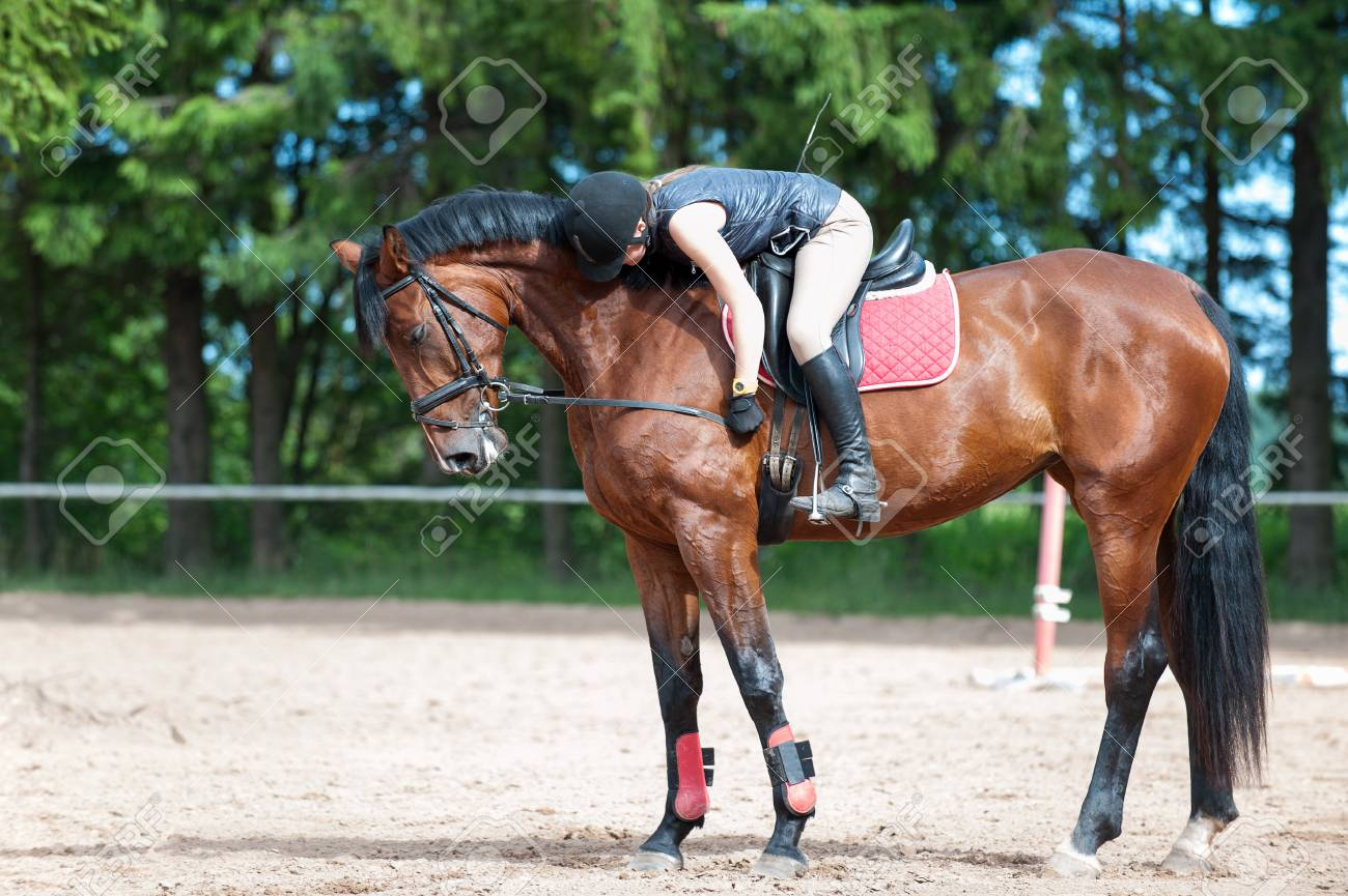 Training process. Young teenage girl riding bay horse on arena at equestrian school. Colored outdoors horizontal summertime image. - 121563102