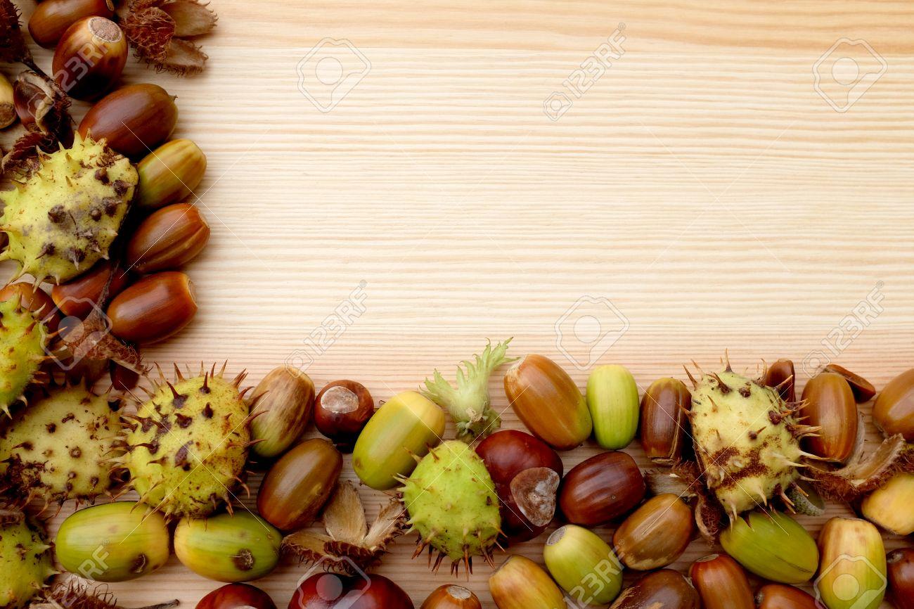Grüne Und Braune Zweiseitige Rahmen Der Natürlichen Herbst Material ...
