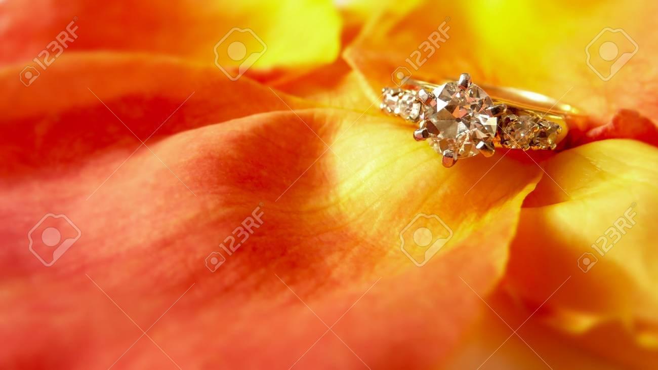 Diamond engagement ring on romantic rose petals Stock Photo - 3665233