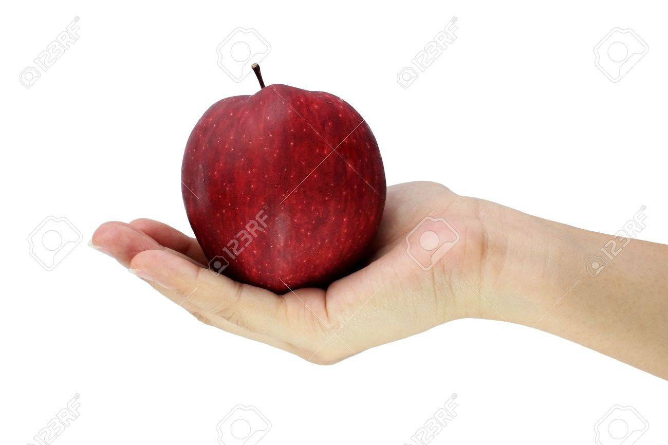 Hand holding red apple Stock Photo - 14251896
