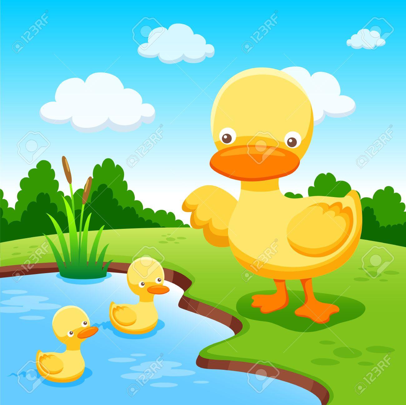 Ducks Stock Vector - 14536885