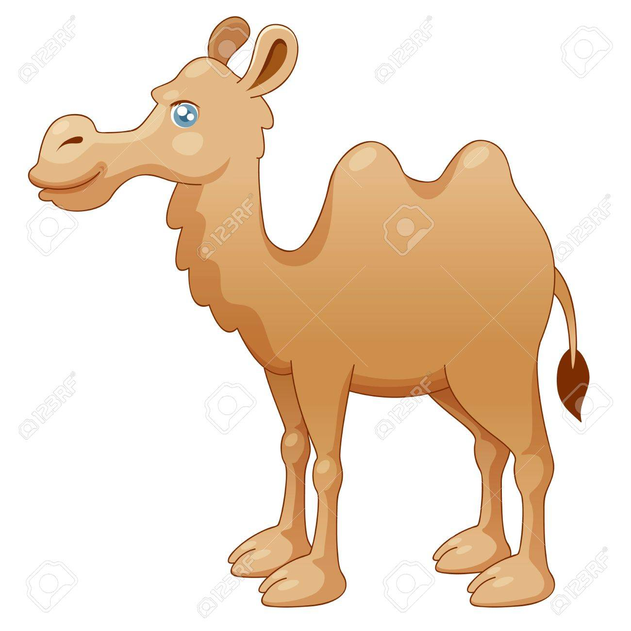 illustration of camel vector royalty free cliparts vectors and