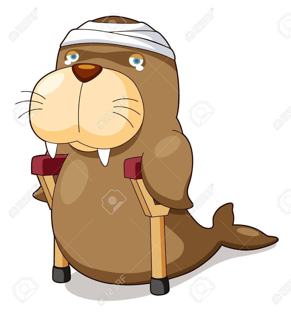 illustration of Cartoon sea lion be injured Stock Vector - 16392836