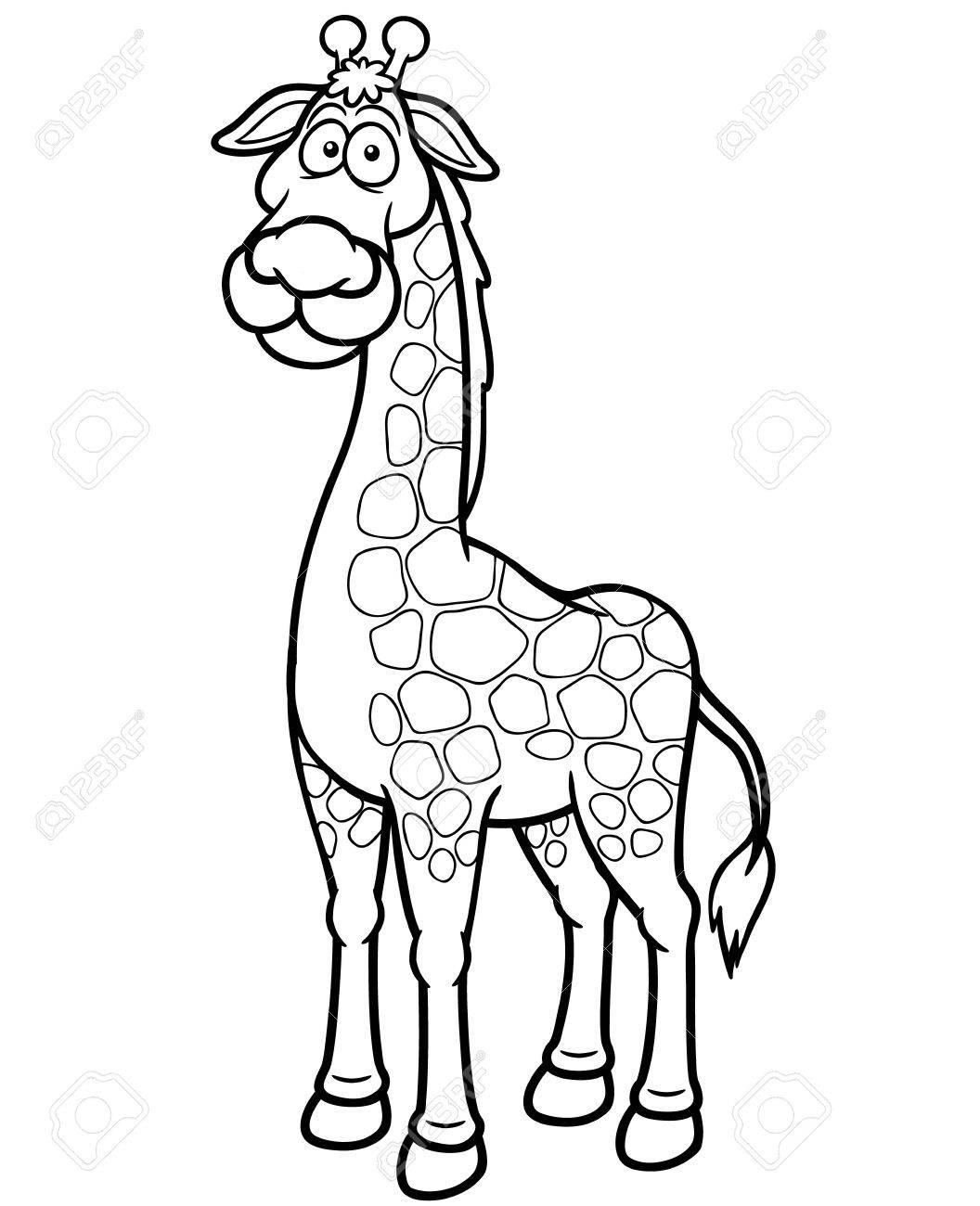 vector illustration of giraffe cartoon coloring book royalty