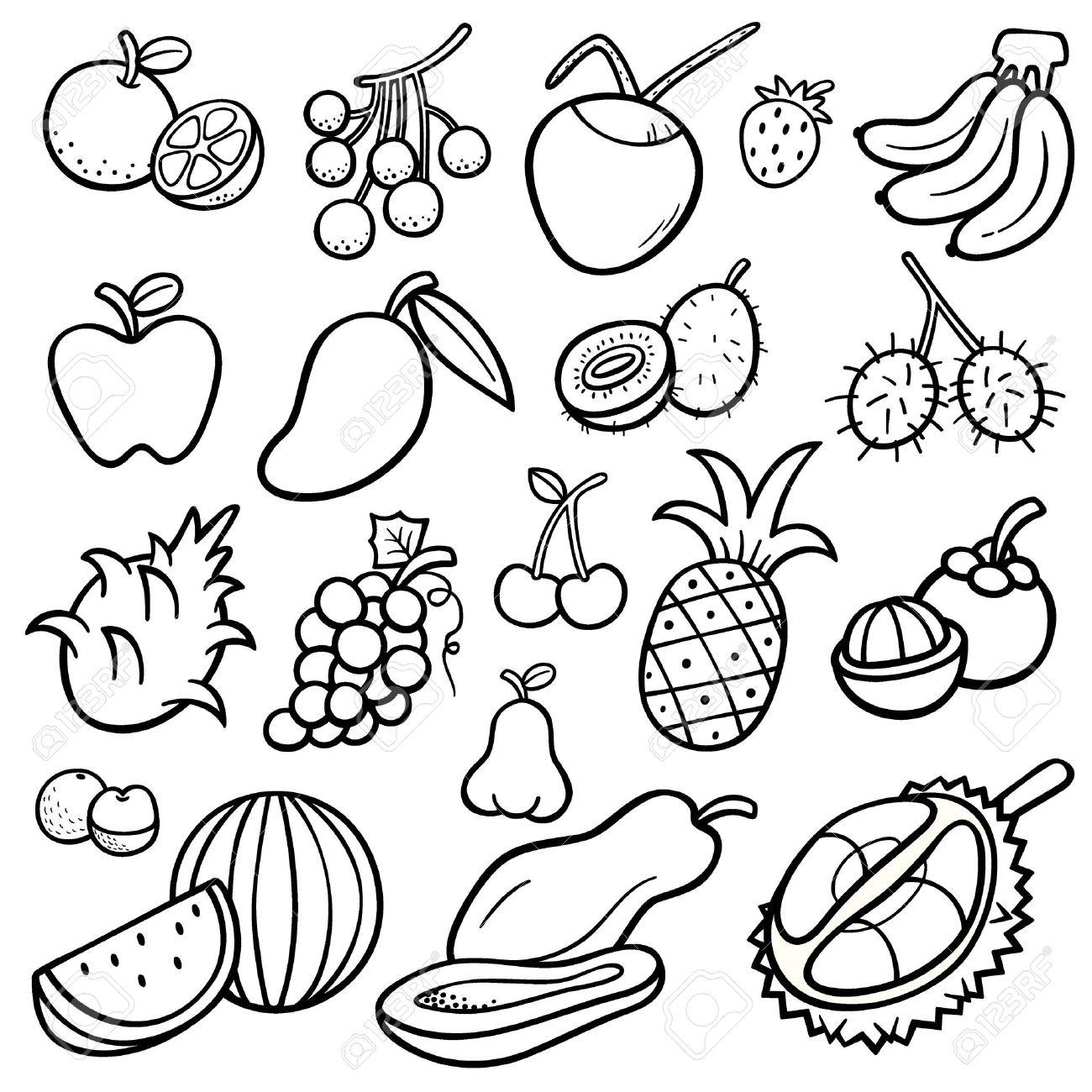 Ilustración Del Vector De Frutas Fijadas   Libro Para Colorear