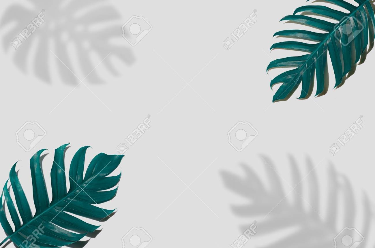 Concept Art Minimal Background Design Leaves Monster Blue Tropical Stock Photo Picture And Royalty Free Image Image 106147936