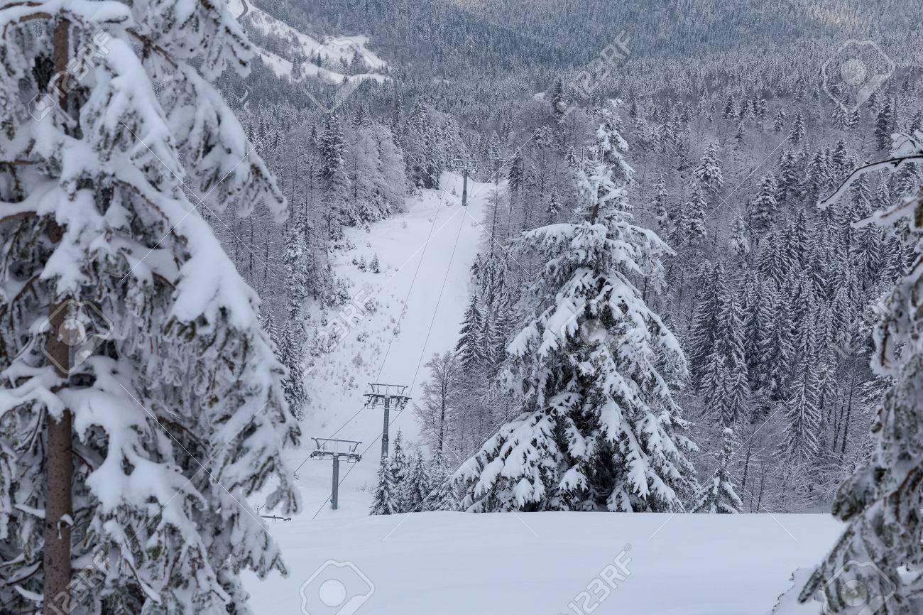Verschneite Landschaft Auf Jahorina Berg In Der Nähe Von Sarajevo ...
