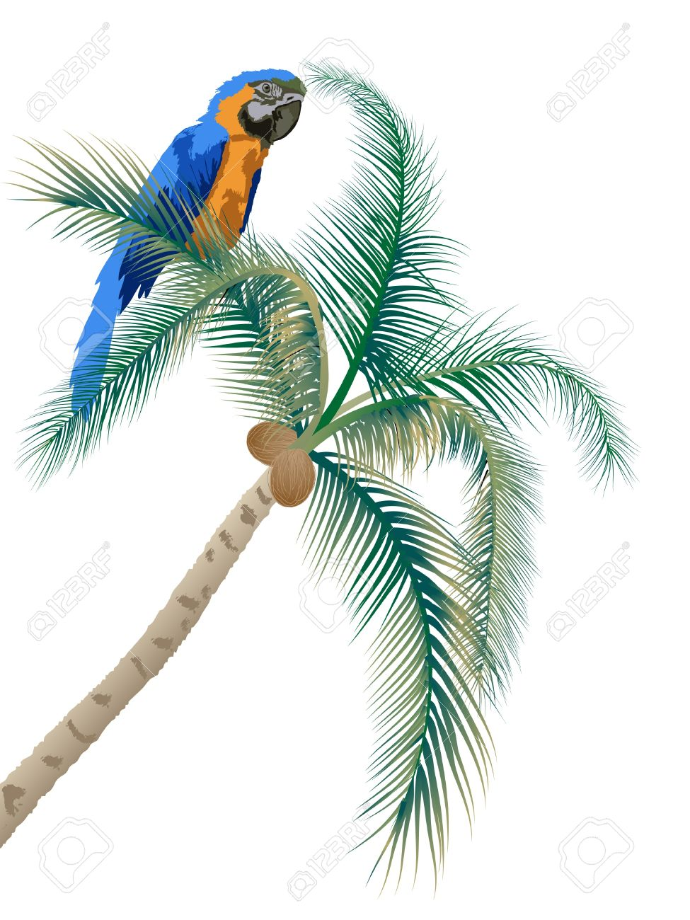 Big parrot sitting on a palm tree Stock Vector - 9493607