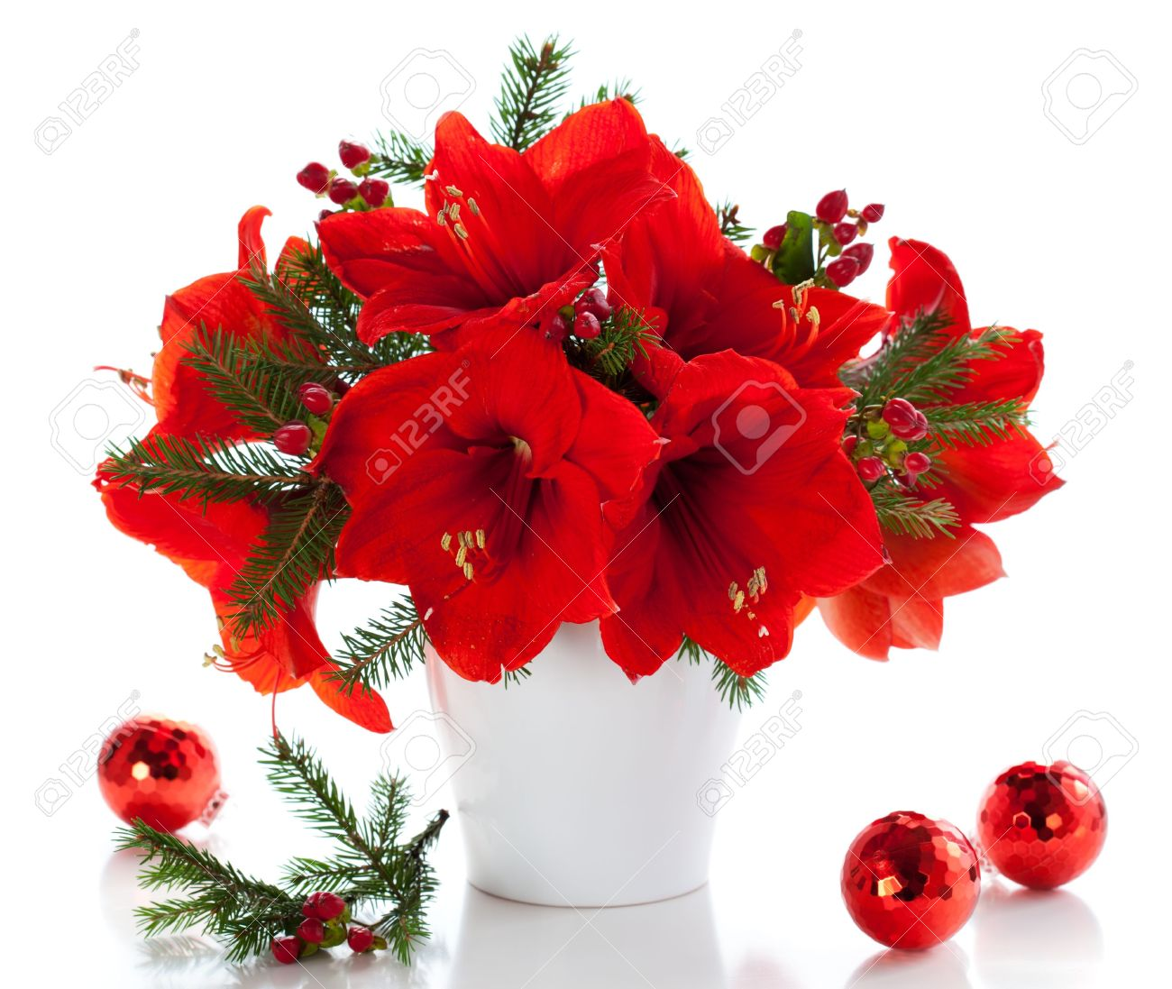 Flower arrangement stock photos royalty free flower arrangement images red amaryllis in vase with christmas decorations izmirmasajfo