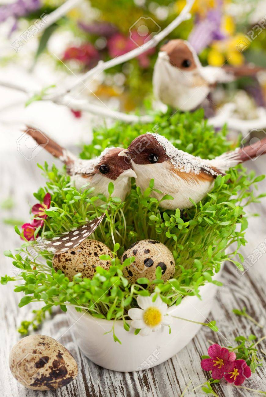 Easter decoration: birds and eggs on the fresh cress Stock Photo - 11963033