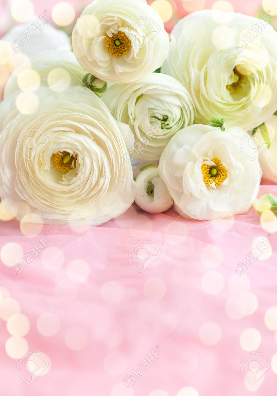 Beautiful Bunch Of White Flowers Stock Photo Picture And Royalty