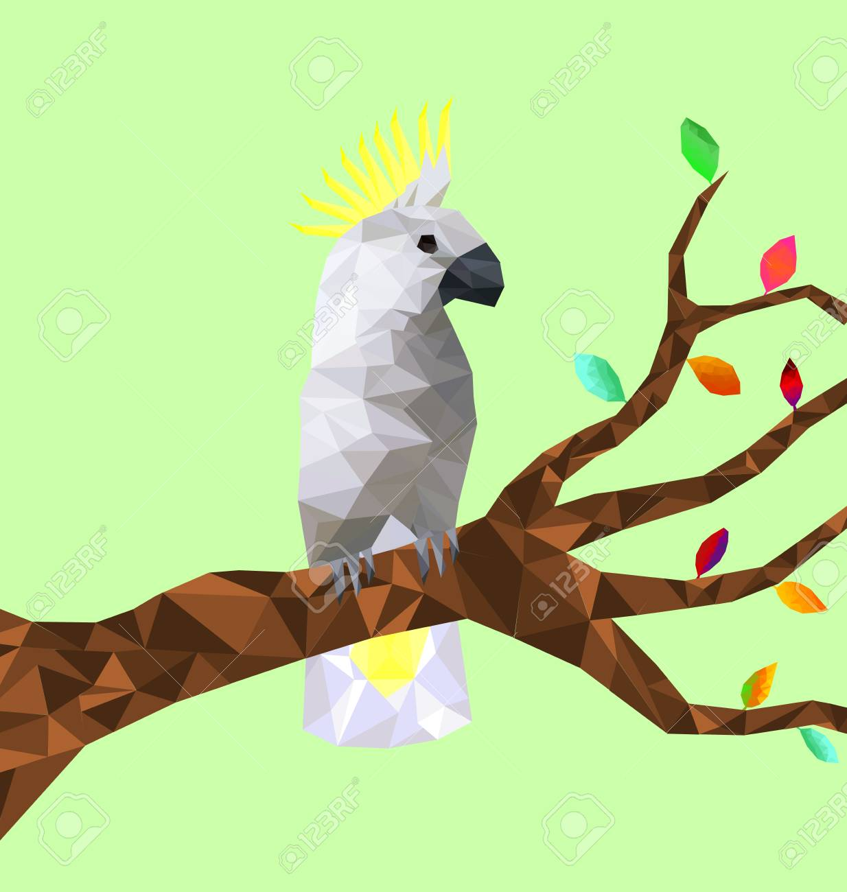 Low poly colorful Cockatoo bird with tree on back ground, birds