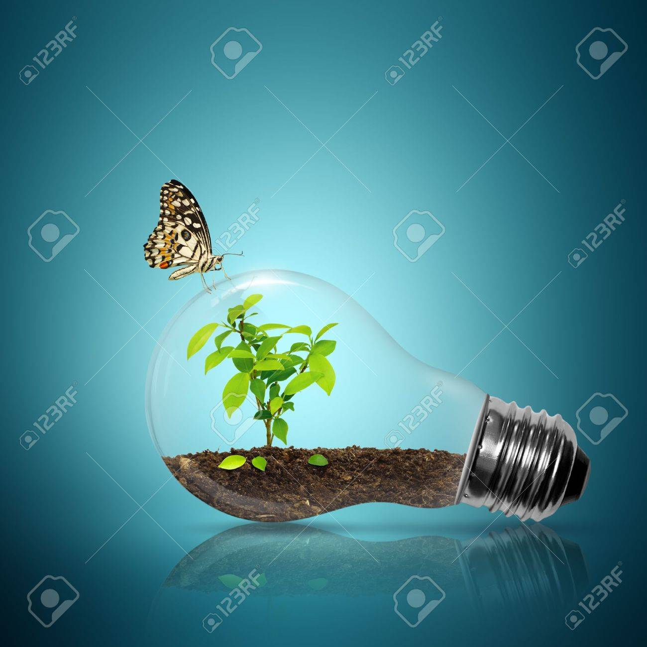 Bulb light with tree inside have butterfly on blue background - 11879216
