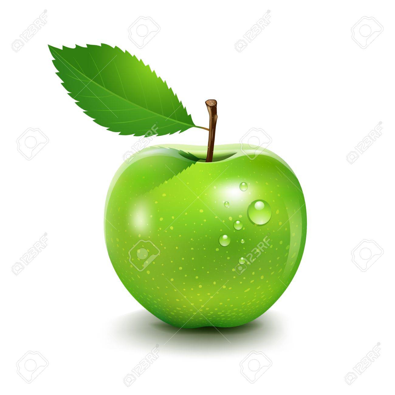 Apple and leaf, Vector illustration Stock Vector - 18713277