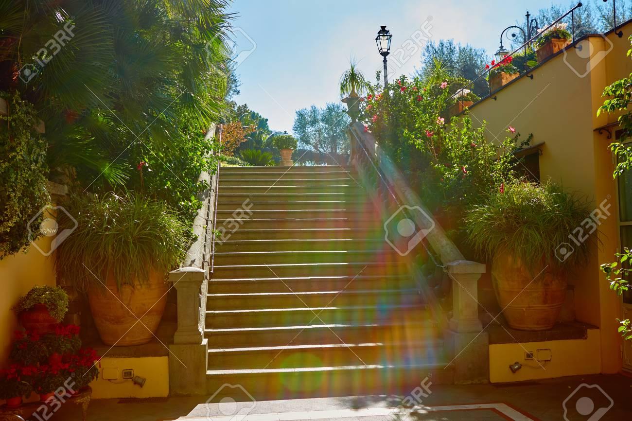 Escalier en béton marron dans le jardin de la ville. Le soleil brille dans  la lentille