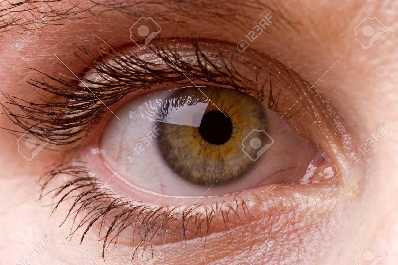 Female single green eye close up - 122981238