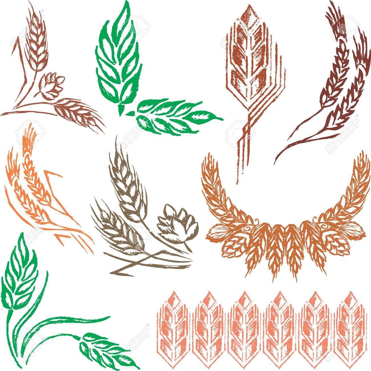 Creative wheat ears and sheafs Stock Vector - 9765857