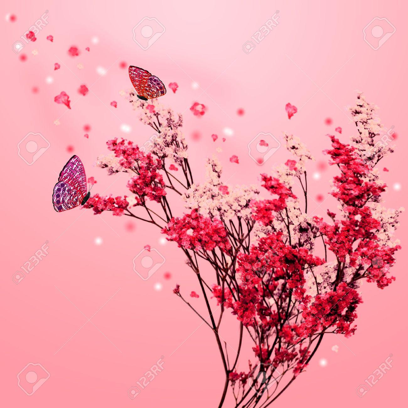 Beautiful blossom tree with pink flowers petals fall and butterfly beautiful blossom tree with pink flowers petals fall and butterfly stock photo 17969819 mightylinksfo