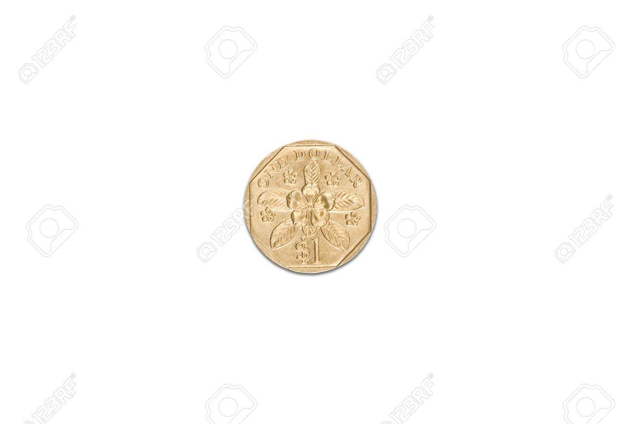 Singapore dollar coin isolated over white background Stock Photo - 10516468