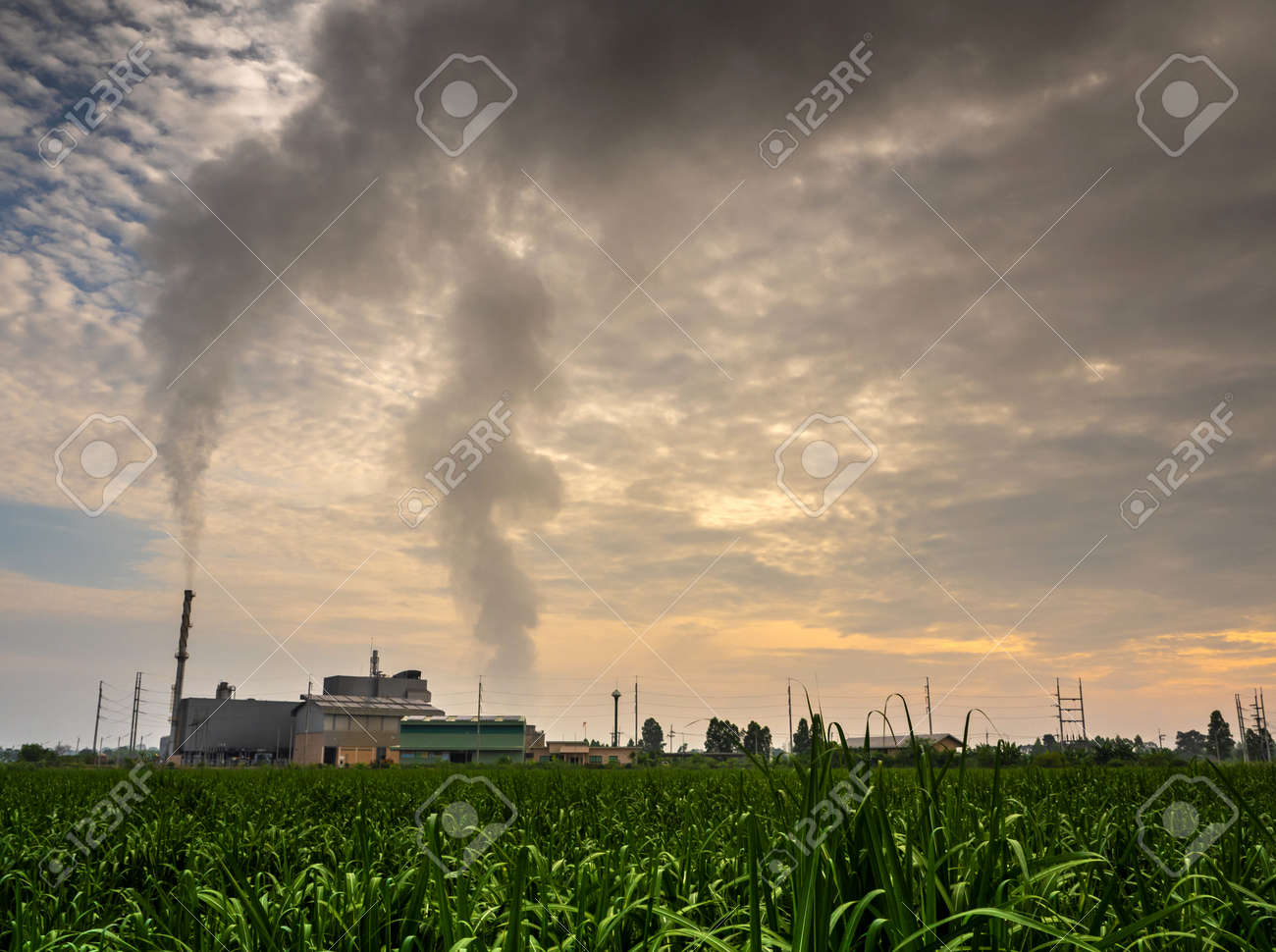 Smoke from the boiler and the steam from the cooling tower in the power plant. It is located in the middle of an agricultural area - 171433050