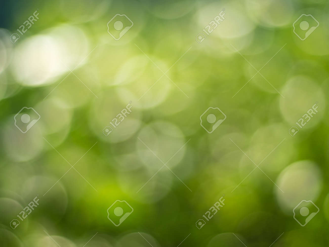 Lights and Green with yellow bokeh on nature defocus abstract blur background. Abstract background yellow and green tones of natural outdoors bokeh - 172430192
