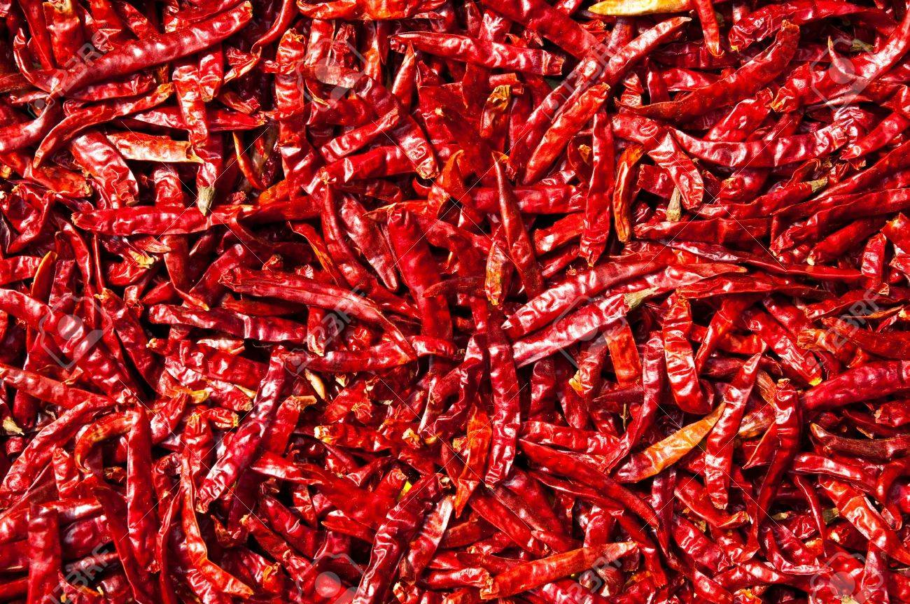 Red chili drying in the sun,Thailand Stock Photo - 8588323