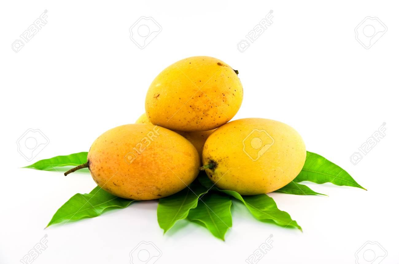 mango on the leaf Stock Photo - 9355002