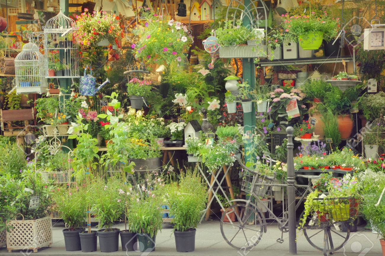 Flower shop - 23042629