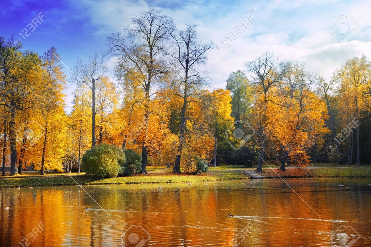 Autumn landscape - 33444101