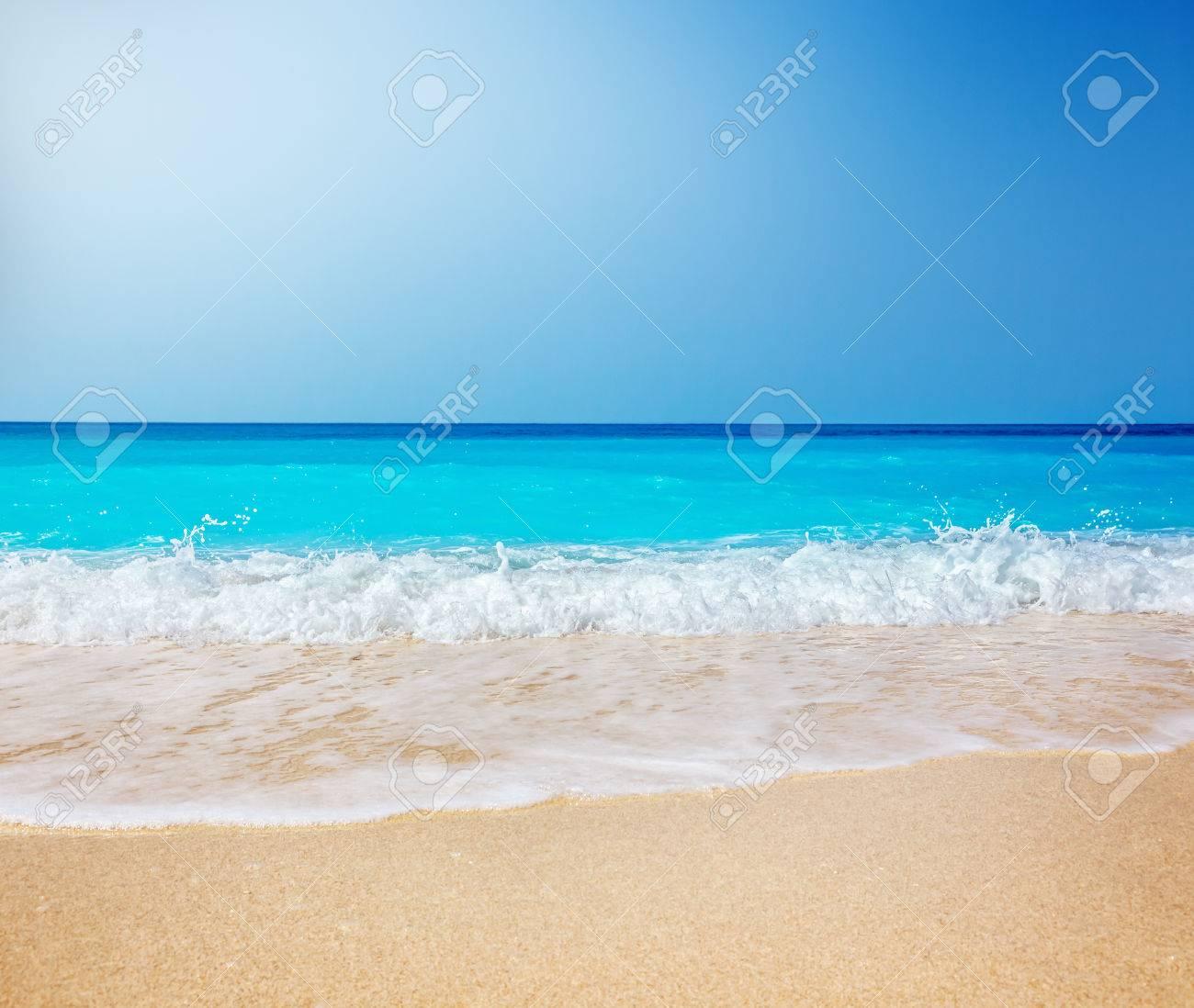 Beach - 44559847