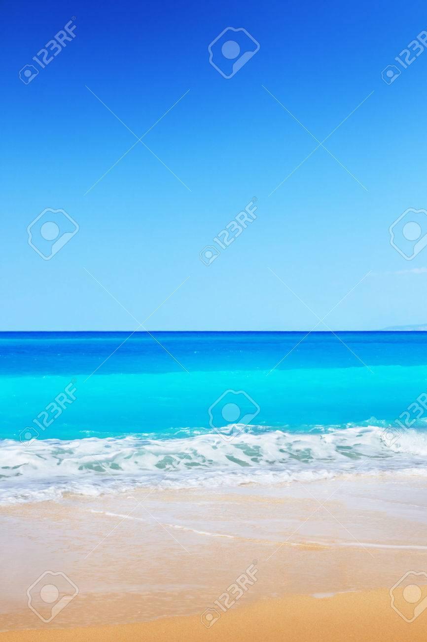 Beach - 44559940