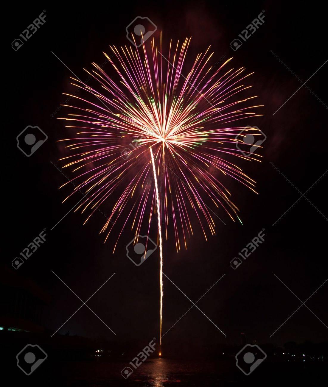 Beautiful  fireworks as palm at night Stock Photo - 8930005