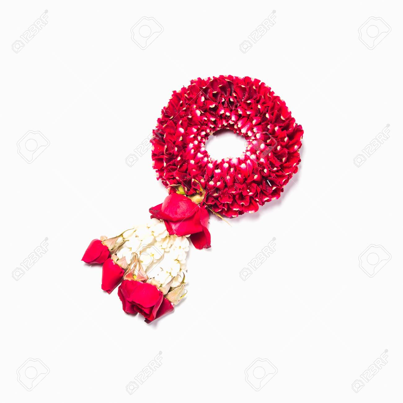 Thai style garland made of rose petals isolated on white background Stock Photo - 17561639