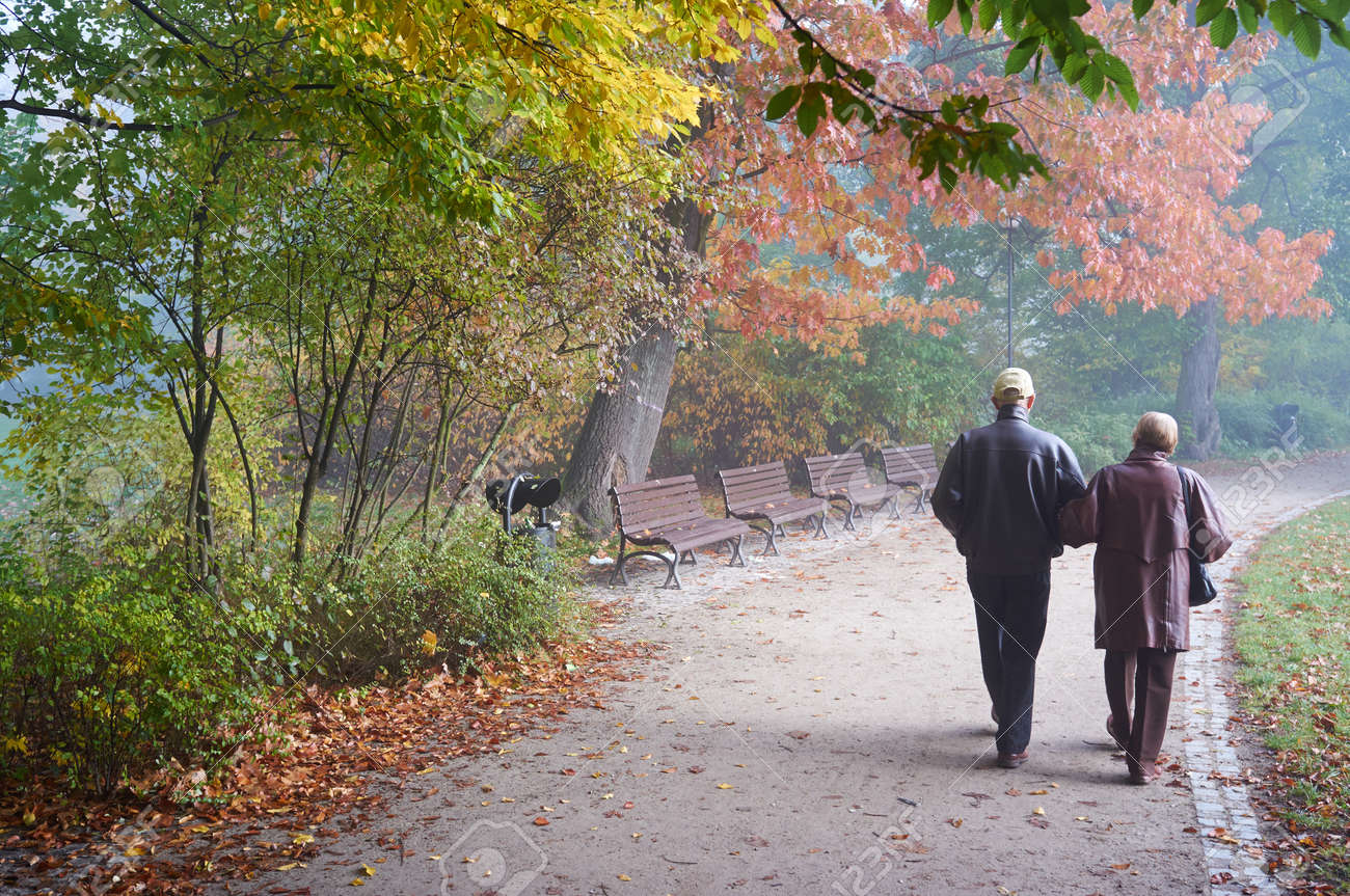 Senior couple in the park - 17056594
