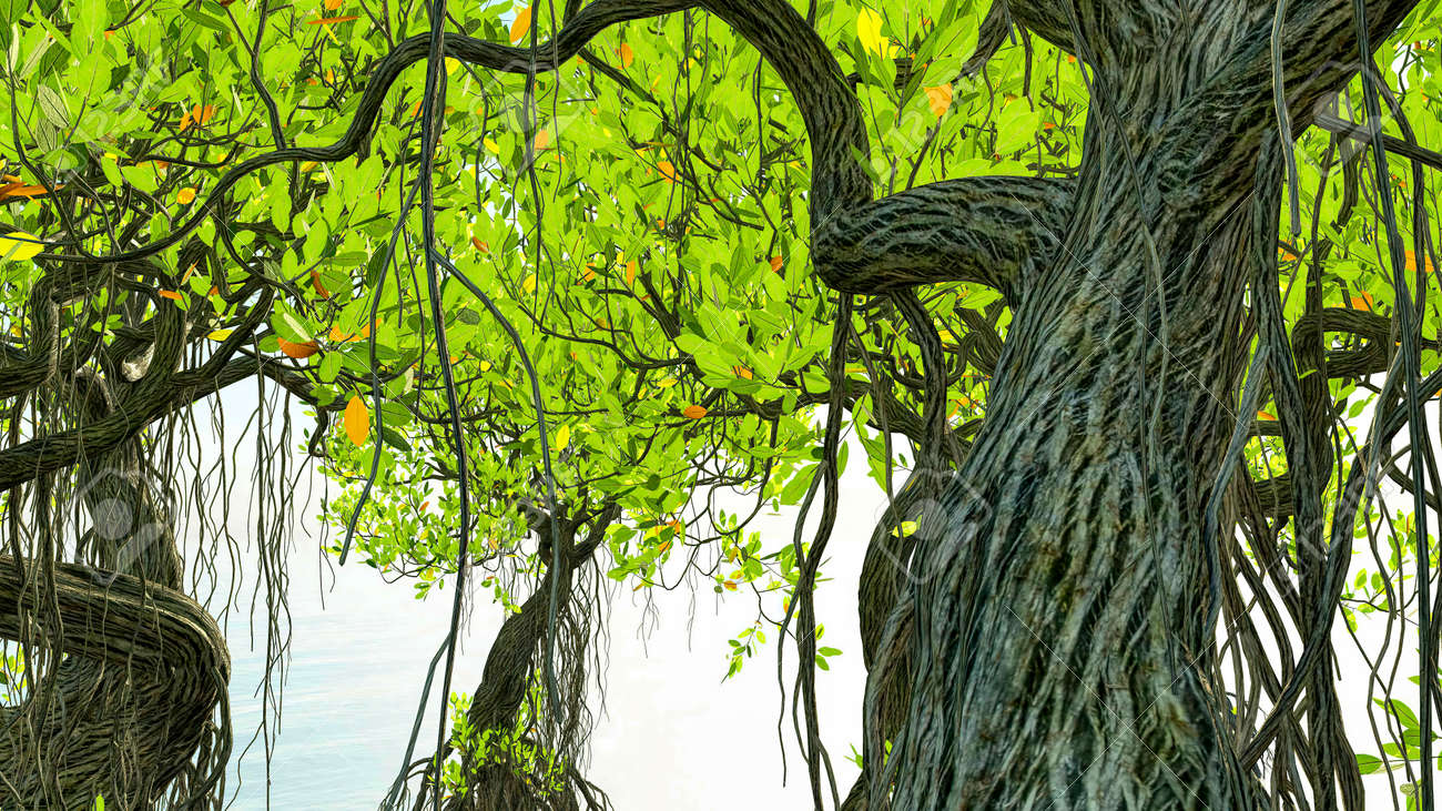 Red mangroves on Florida coast 3d rendering - 151839559