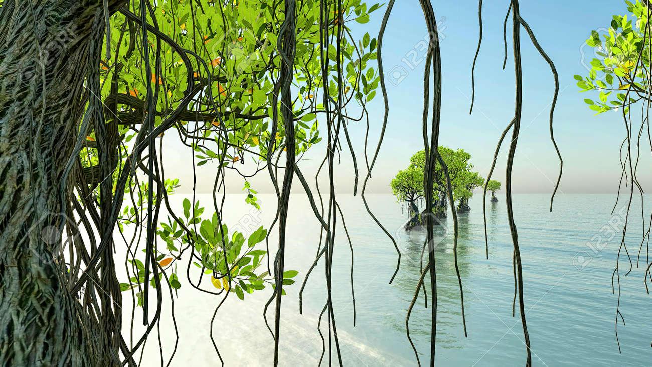 Red mangroves on Florida coast 3d rendering - 151839565