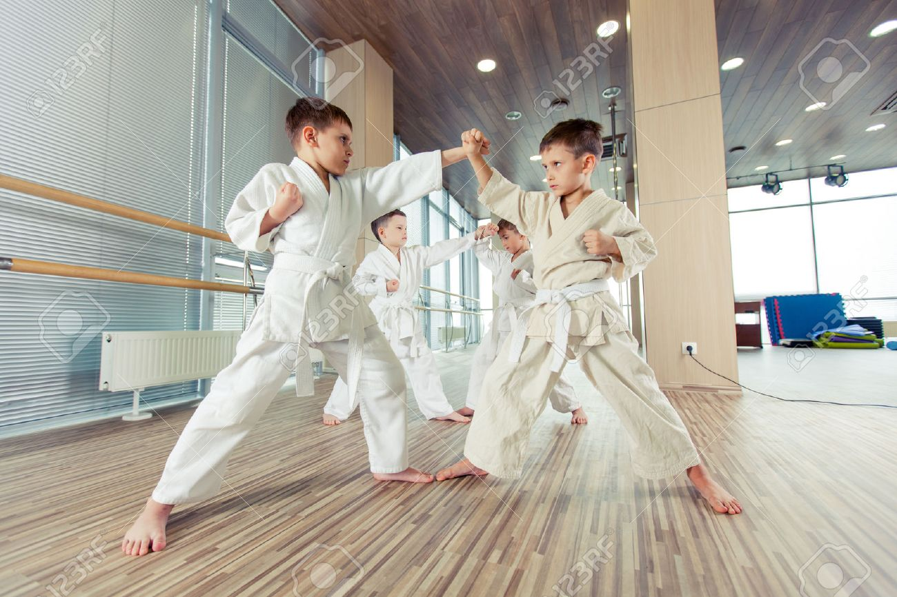 young, beautiful, successful multi ethical karate kids in karate position - 58397271