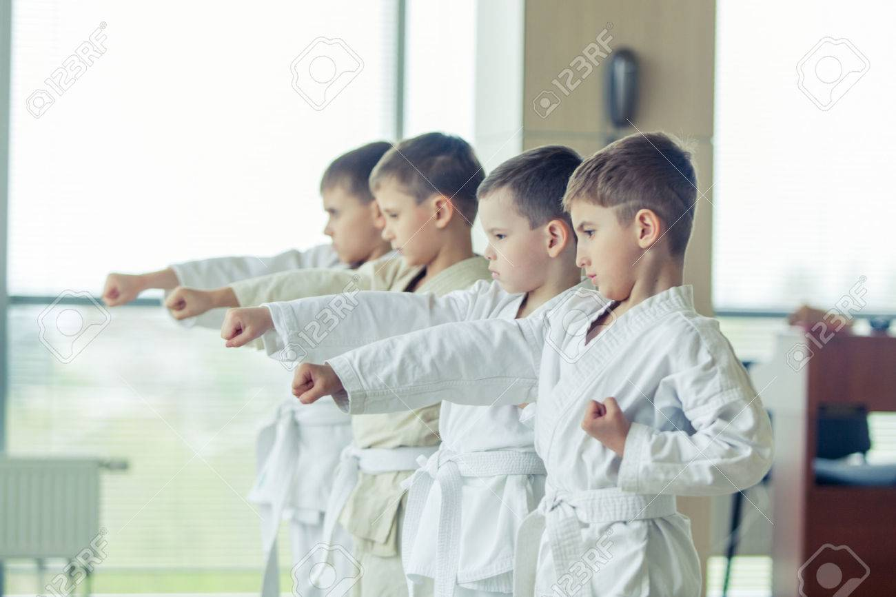 young, beautiful, successful multi ethical karate kids in karate position - 58397919