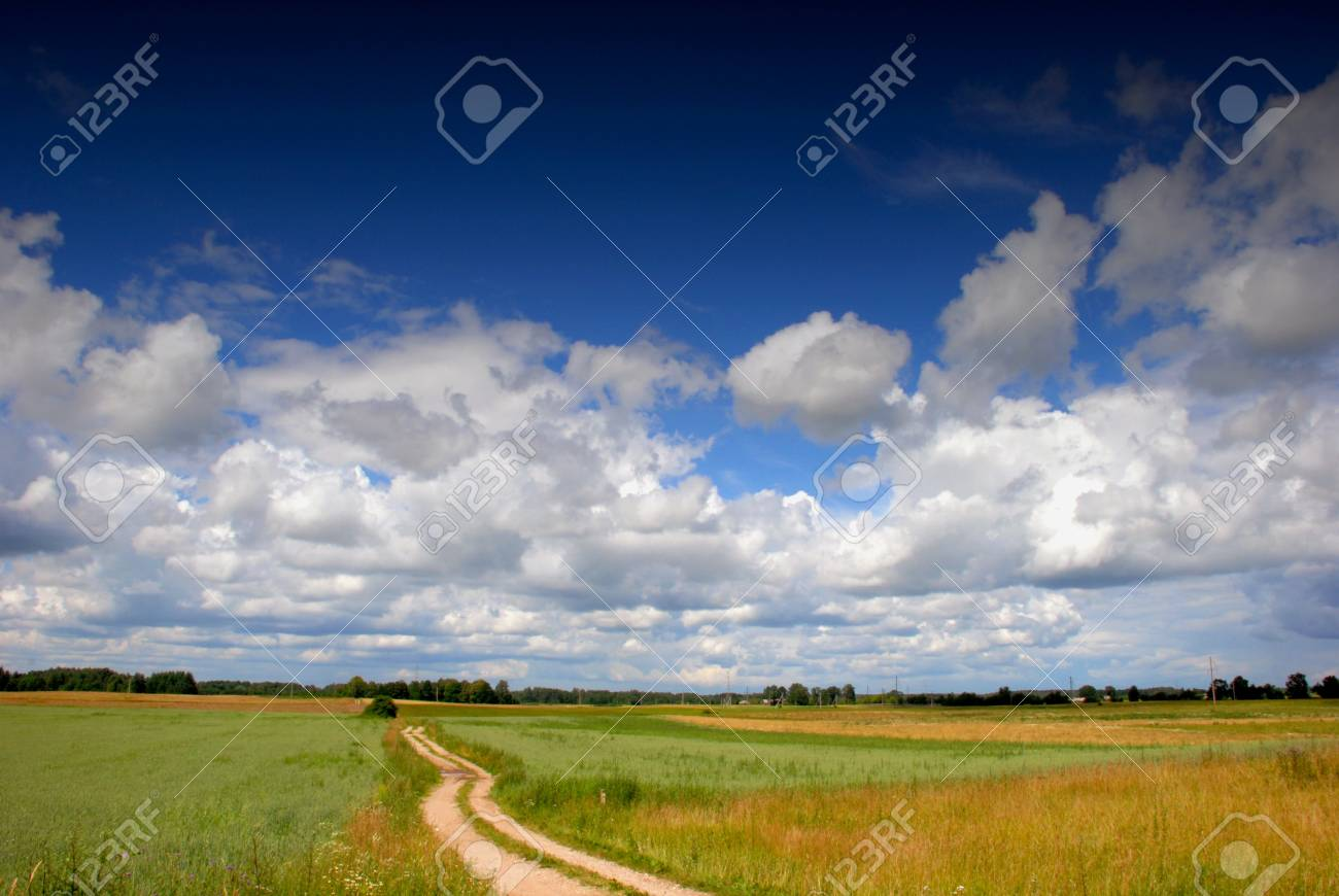 Road through the fields in huge space under the clouds Stock Photo - 8798206