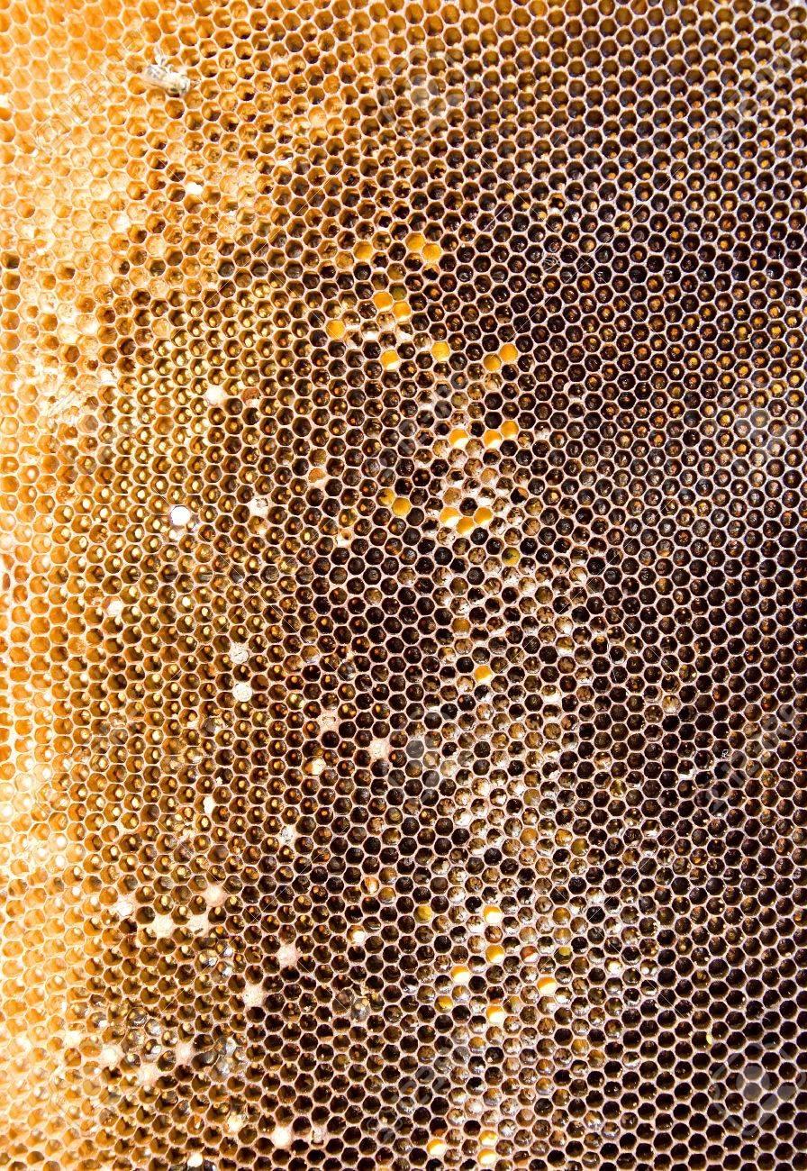 utilisé sales textures nid d'abeille de couleur brun doré banque d