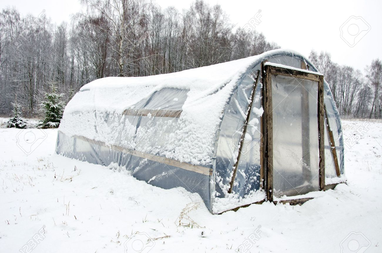 Wooden Diy Homemade Greenhouse Covered With Polythene And Snow ...